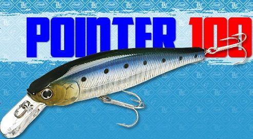 Lucky Craft Pointer 100 Salt Water
