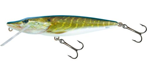 Salmo Pike Jointed 9 F